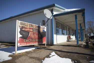 A Cactus branch of the Amarillo Somali Community Center on Jan. 29, 2020.